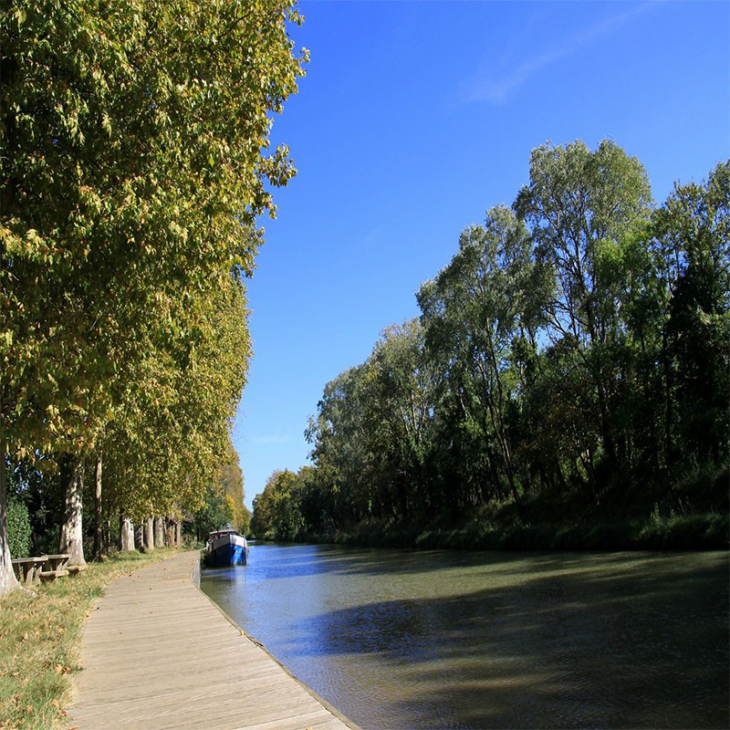 Canal du Midi, Fruits de...