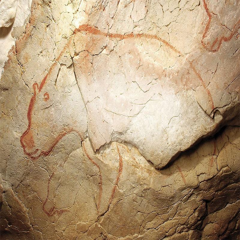 Grotte Chauvet et Cevennes